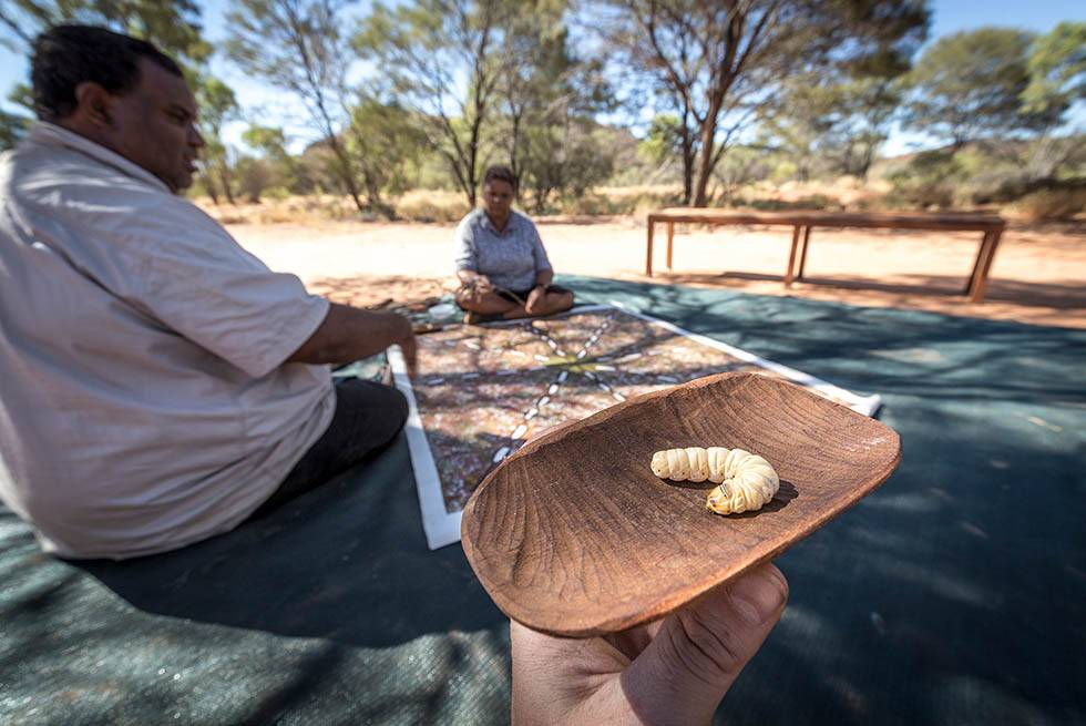 Witchetty grub on the Karrke Indigenous Experience